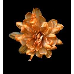 Краска для окрашивания живых цветов, цвет золотая бронза, #25, 0,275 л.